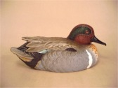 Shaker Prairie Shop | Green Winged Teal Duck